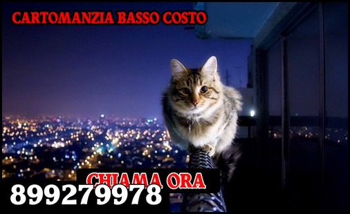 Cartomanti al Telefono 899279978